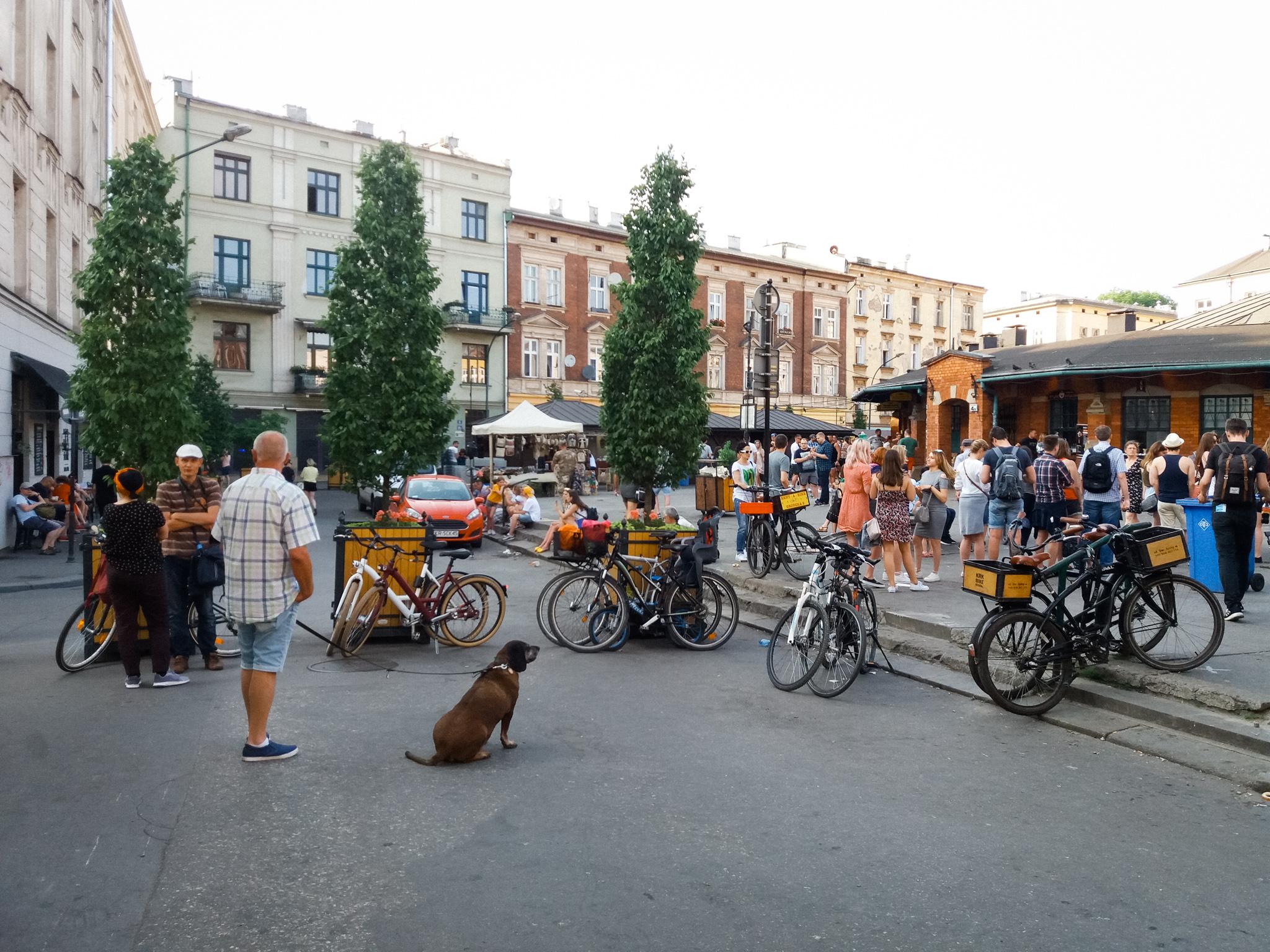 plac Nowy, kontynuacja działań w Krakowie, rok 2019, fot. Aleksander Gurgul